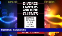 Big Deals  Divorce Lawyers and Their Clients: Power and Meaning in the Legal Process  Full Read