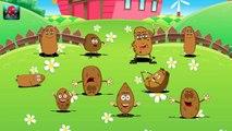 1 Potato, 2 Potato  Funny Potato Song  )