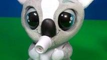 Kao Kao ,  Koala interactivo