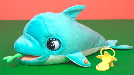 Blublu - Baby Dolphin