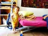 Bebe Baila Chistoso! jaja ★ bebes divertidos   risa bebe   bebes chistosos   bebe humor