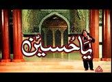 Hum Log Dua E Zehras(s.a) Hain Nohay By Zaigham Abbas