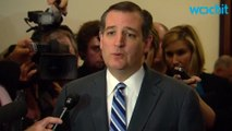 Ted Cruz Suggests Going Against The Constitution