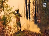 Chile forest fires, Troops join fight against worst fires in decades