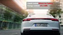 Porsche Panamera 4 E-Hybrid and Panamera Executive Models
