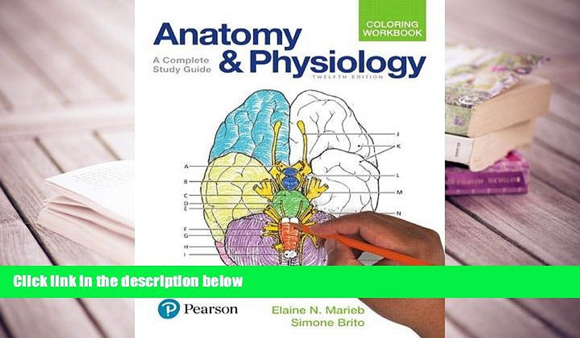 A Complete Study Guide Anatomy and Physiology Coloring Workbook 12th Edition