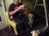 Ratons laveurs nourris par un vieux monsieur tellement bavard mais bienveillant !