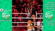 WWE Vines Compilation   WWE Divas Vines Part 1   WWE Vines 2015   Best WWE Vines   WWE Vines Funny