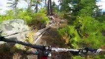 La descente en VTT complètement folle de Steve Storey sur un petit chemin de forêt
