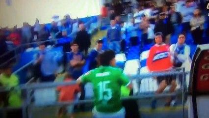 Angry Argentinian Soccer Player Sebastian Pol Kicking A Fan