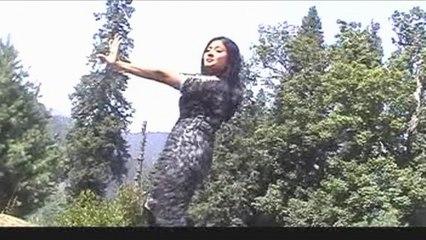 Salma Shah - Janan Mei Der Khaista Dey - Pashto Movie Songs And Dance