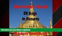 Video EBOOK ONLINE Burmese Daze: Myanmar in 28 Photos - Highlights Of Myanmar/Burma From A Tourist s Eye