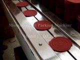 Mosquito Coil Packing Machine, Flow Wrap Machine, Horizontal Packaging Machine