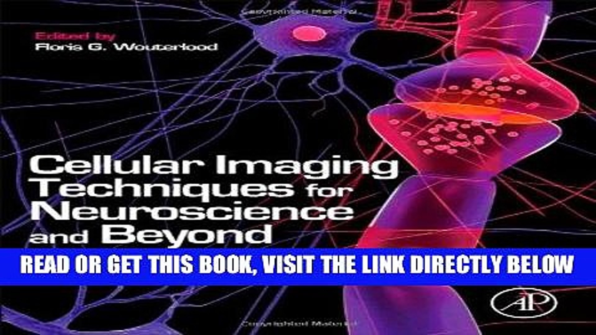 Cellular Imaging Techniques for Neuroscience and Beyond