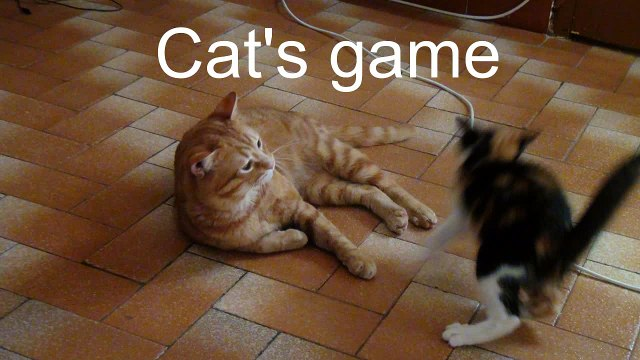 Cat's game (very effective)