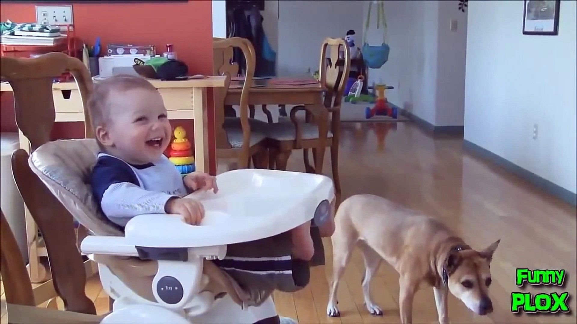 Bebelusi haiosi, Videoclipuri amuzante cu bebelusi, Cute babies doing funny things, Bebes chistosos