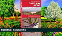 READ NOW  Cape May Birds: A Folding Pocket Guide to Familiar Species in Cape May County (Pocket