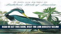 [READ] EBOOK Audubon s Birds of America (Tiny Folios) BEST COLLECTION