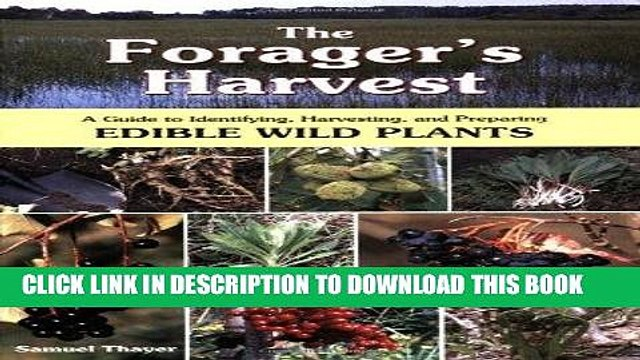 [Read] Ebook The Forager s Harvest: A Guide to Identifying, Harvesting, and Preparing Edible Wild