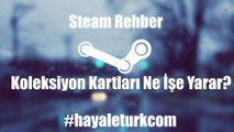 Steam Rehber - Koleksiyon Kartları Ne İşe Yarar