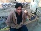 Funny Pathan Molana Bijli ghar parody