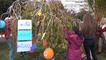 Zonguldak Lösemi Hastası Çocuklar Dileklerini Ağaca Astı