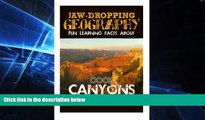Must Have  Jaw-Dropping Geography: Fun Learning Facts About Cool Canyons: Illustrated Fun Learning