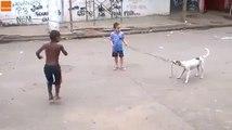 Un nouveau partenaire de jeu pour des enfants au Brésil !