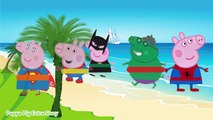 Finger Family Song - Peppa Pig Character, Peppa Pig go to the Beach - Nursery Rhymes Collection