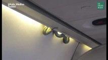 Un passager hors du commun s'est invité à bord de cet avion