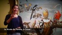 Visite en langue des signes au musée de Flandre