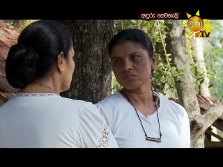 Anduru Sewaneli 08/11/2016 - 66