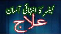 Cancer Ka Desi Ilaj Urdu _Hindi AntiCancer Agents