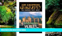 Must Have  Jaw-Dropping Geography: Fun Learning Facts About Wonderful Wales: Illustrated Fun