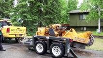 Amazing Stump Grinder - tree clearing machine - tree trimming equipment