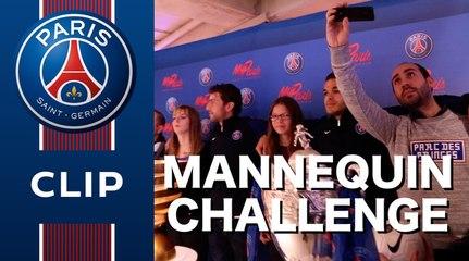 Mannequin Challenge: Ben Arfa, Maxwell + 400 fans