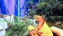 Toy Dinosaurs for Children Dinosaur Battles T Rex Fighting Dinosaurs Battle Fighting Dinosaurs