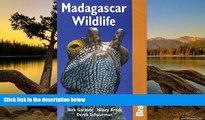 Best Deals Ebook  Madagascar Wildlife 3rd (Bradt Travel Guide Madagascar Wildlife)  Most Wanted