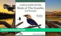 Big Deals  A Field Guide to Birds of The Gambia and Senegal  Best Buy Ever