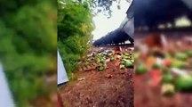 Train Destroys Watermelon Truck | Gallaghers Final Act