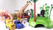 Voitures. Zoo. Dessin animé éducatif pour enfants. Speedy et Bussy visitent le Zoo: animaux sauvages