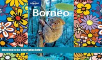 Must Have  Borneo (Lonely Planet Travel Guides)  Buy Now
