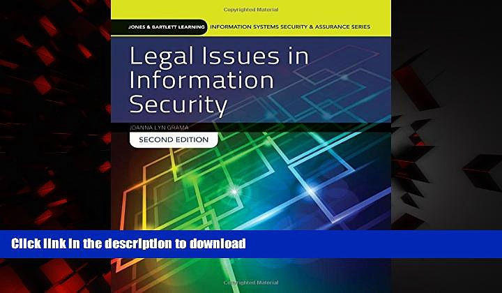 Best books  Legal Issues In Information Security (Jones   Bartlett Learning Information Systems