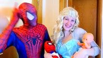PREGNANT FROZEN ELSA vs SPIDERMAN - SPIDERBABY TWINS w/ Pink Spidergirl Twins Funny Superhero & HULK