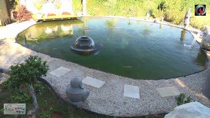 Aqua Rev les bassins de Stephane