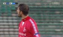 Franco Brienza Goal - FC Bari 1-0 Spezia Calcio - (13/11/2016)