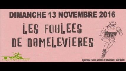 Foulées Damelevières 2016