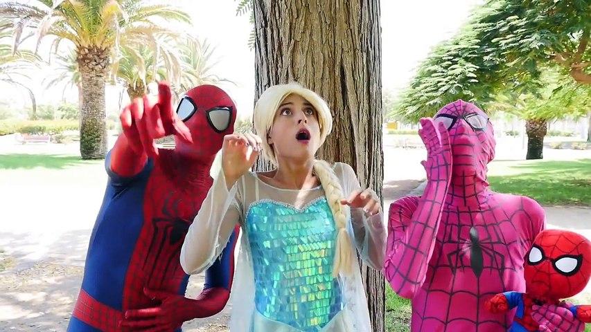 Spiderman et la reine des neiges Mangent des glaces avec spidergirl et bébé spider