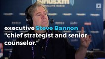 Trump receives backlash for appointing Steve Bannon chief strategist