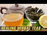 Top Healing Herbal Teas | Best Health and Beauty Tips | Drinks